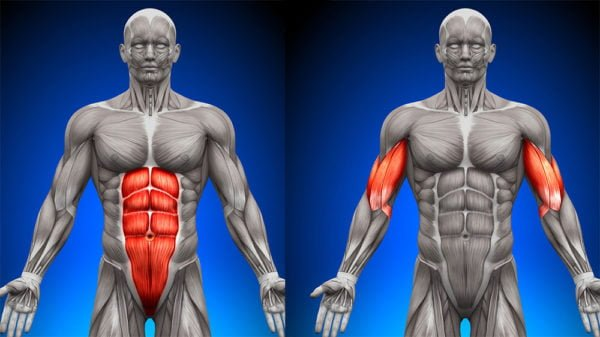 Anvarol REVIEW – #cutting – Does it really WORK?? Can you get